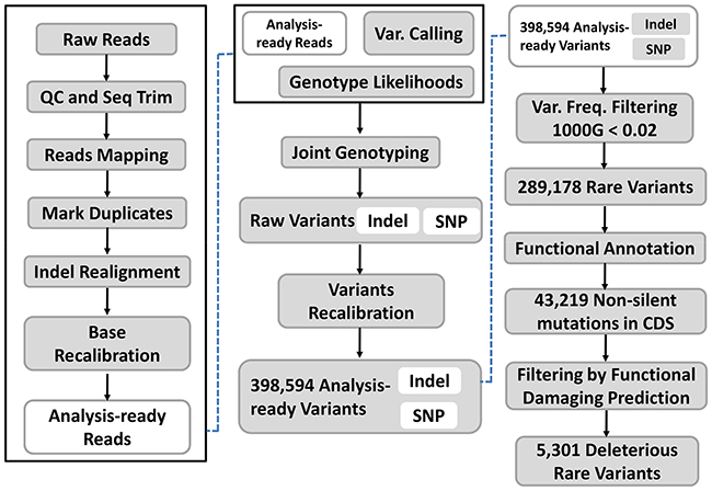 Analysis of whole-exome sequencing data.