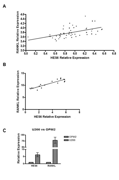 Notch pathway activation is correlated with RANKL expression levels in MM patients.