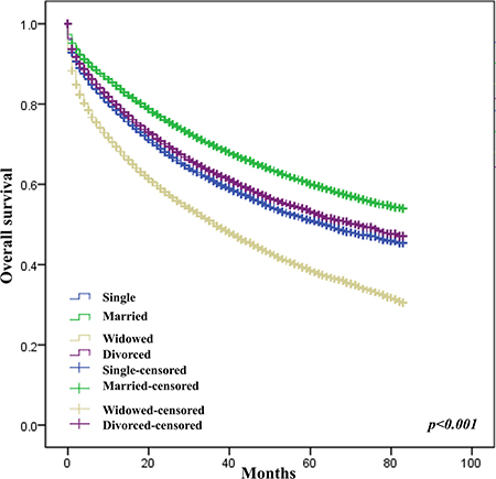 Effect of marital status on survival of CRC patients.