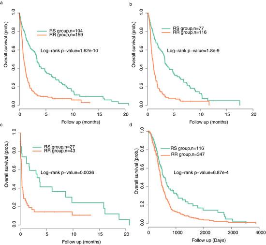 Tumor classification by radiosensitivity gene signature shows distinct prognostic outcomes.