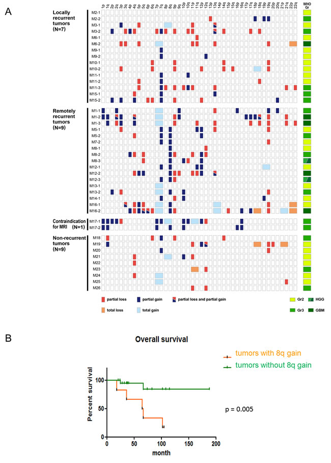 The clinical significance of an 8q gain in astrocytomas, IDH-mutant.