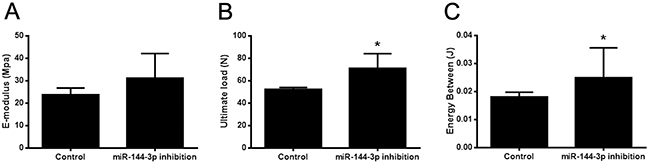 Bone healing property was enhanced by miR-144-3p inhibitor therapy.