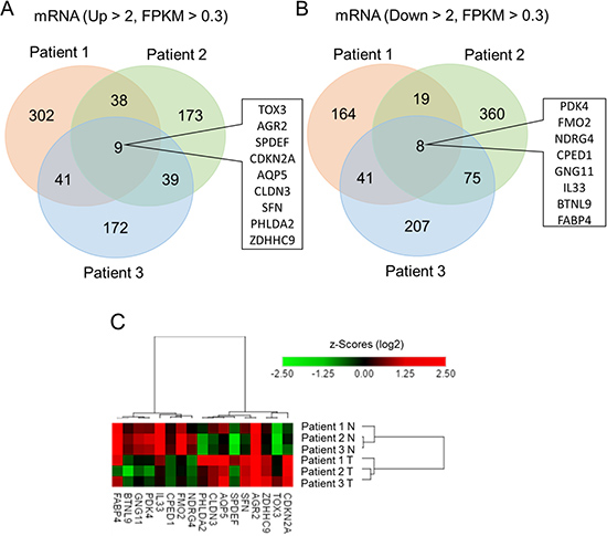 Identification of differentially expressed genes in lung adenocarcinoma compared to adjacent normal tissue using next-generation sequencing.