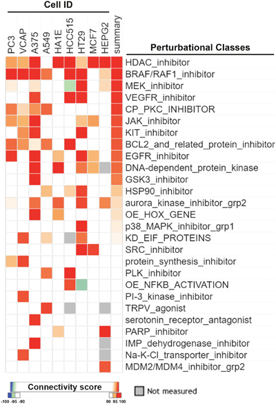 CMap analysis of drug connections with sorafenib.