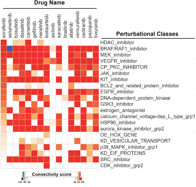 CMap analysis comparing drug connections with sorafenib and other protein kinase inhibitors.