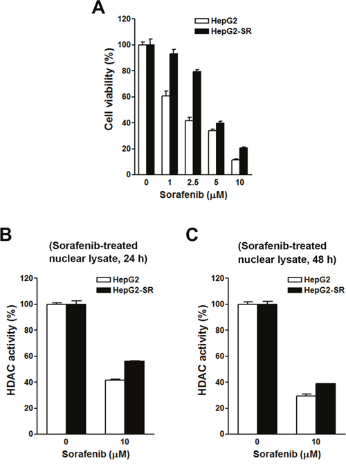 Effects of sorafenib on cell viability and histone deacetylase (HDAC) activities in HepG2 and HepG2-SR cells.