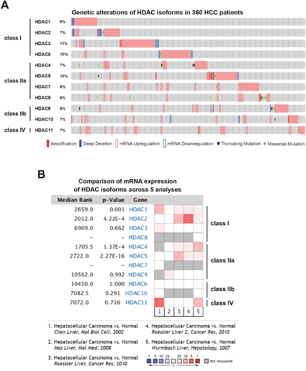 Cancer genomics and Oncomine analysis of genetic alterations of histone deacetylases (HDACs).