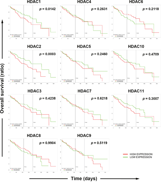 Role of each histone deacetylase (HDAC) isoform in the overall survival of hepatocellular carcinoma (HCC) patients.
