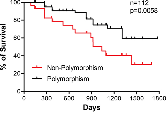 Correlation of microsatellite polymorphisms with disease-free survival of colorectal cancer patients.