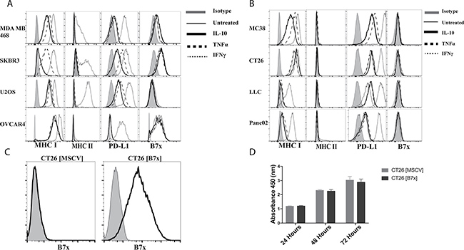 B7x expression is unaffected by cytokine stimulation and does not affect proliferation in vitro.