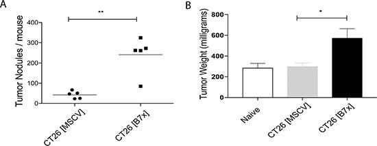 Tumor-expressed B7x increases pulmonary metastases.