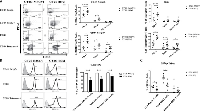 B7x influences antigen-specific T cell exhaustion and inhibits co-expression of pro-inflammatory cytokines in CD4 and CD8 T cells.