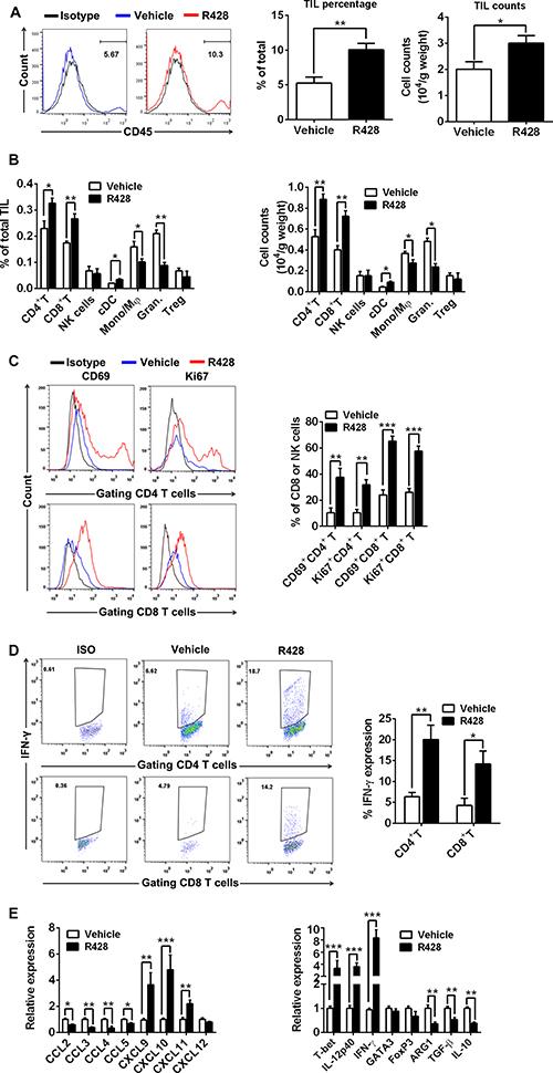 Immune effector mechanisms induced by Axl inhibition.