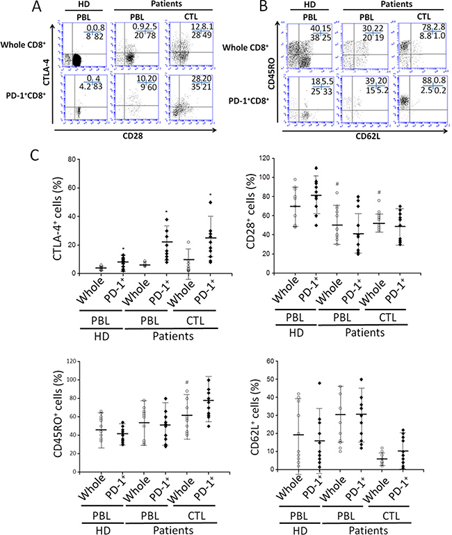 The phenotypic characterization of PD-1+CD8+ cells in PBLs and tumor infiltrating CTLs.