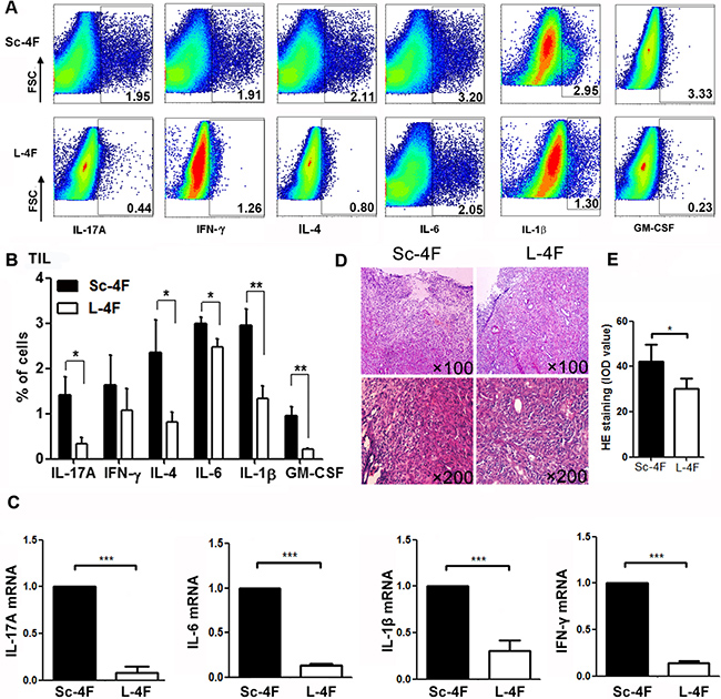 L-4F reduces inflammation in a mouse model of pancreatic cancer.