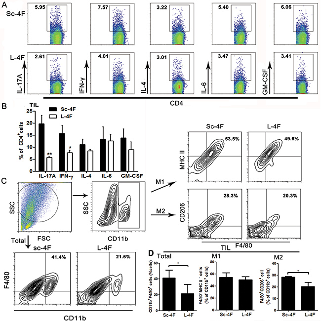 L-4F decreases Th17 cell, Th1 cell and TAM populations in a mouse pancreatic cancer model.