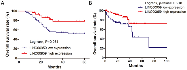 LINC00959 prognostic value in CRC patients.