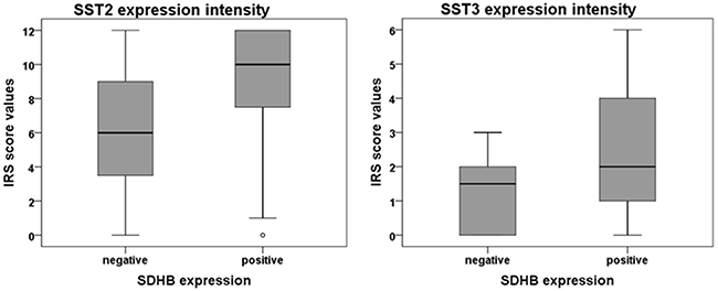 SST2A and SST3 expression intensity in SDHB-negative and -positive paragangliomas.