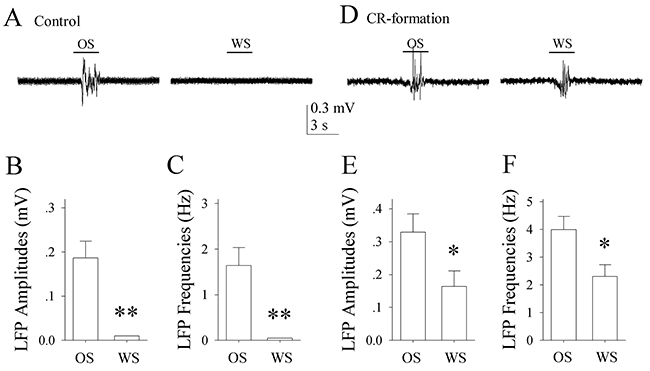 The neurons of the piriform cortices in CR-formation mice encode and distinguish OS and WS.