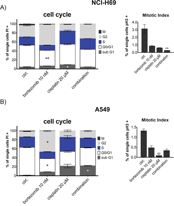 Cell cycle analysis of NCI-H69 and A549 after treatment with bortezomib and cisplatin.