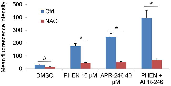 PARP-1 inhibition promotes the accumulation of ROS in APR-246-treated HNSCC cells, which is abrogated by pretreatment of antioxidant NAC.