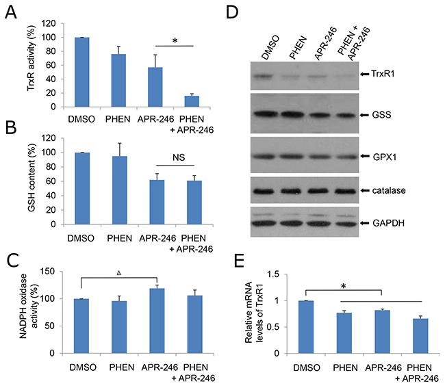 PHEN and ARP-246 suppress TrxR1.