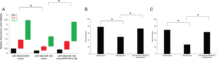 PPP1R1C expression levels dictate cell viability, migration and invasion abilities in GBM cells.