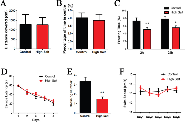 High salt induced hypertension induces cognitive impairment in rats.