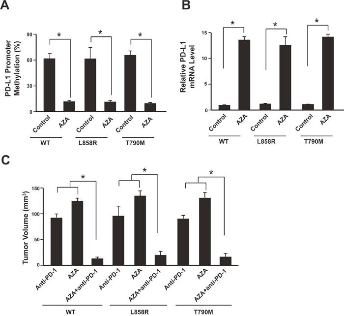 Azacytidine sensitizes NSCLC to anti-PD-1 therapy.
