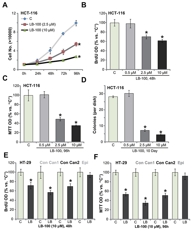 LB-100 inhibits survival and proliferation of CRC cells.