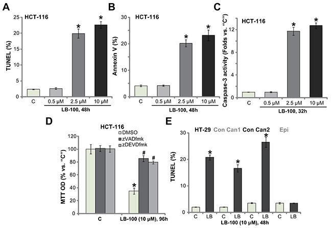 LB-100 activates apoptosis in CRC cells.