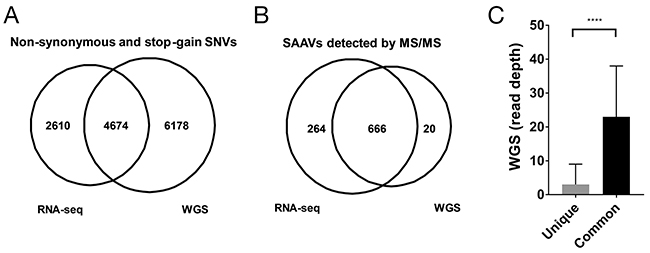 Comparison of RNA-seq and WGS variants for proteomics.