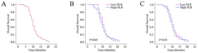 Relationship between baseline NLR and PLR levels and the outcomes.
