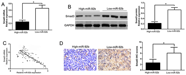 An inverse correlation between miR-92b and Smad3 expression is observed in NPC.