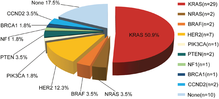 Molecular profiling of actionable genetic alterations in 57 CRC patients.