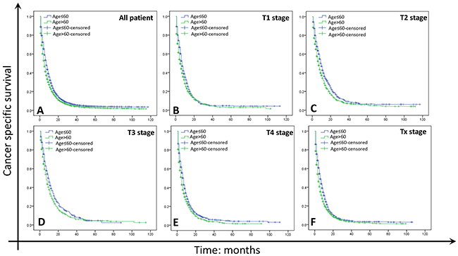 Survival curves in GC patients with M1 of different age.