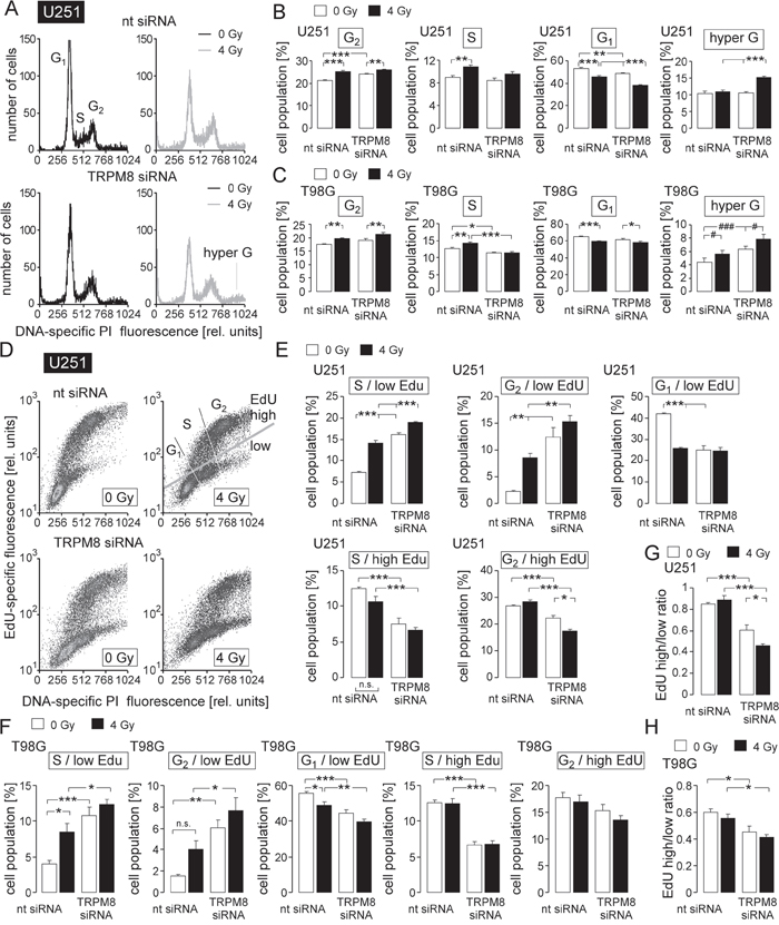 TRPM8 RNA silencing impairs cell cycle control in irradiated glioblastoma cells.
