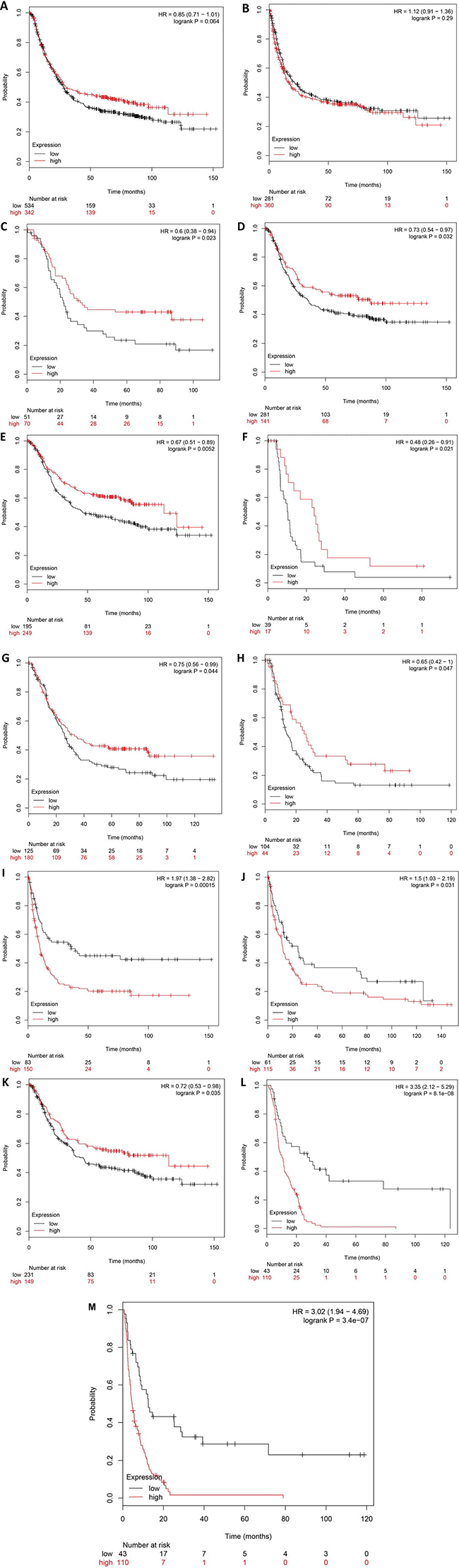 The prognostic significance of DNMT1 mRNA in the patients with gastric cancer according to the database from Kaplan Meier plotter.