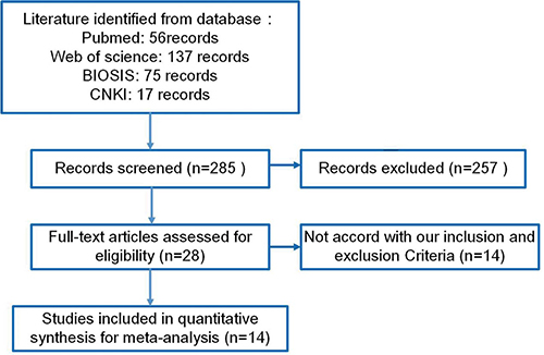Flow chart of the selection process in this meta-analysis.