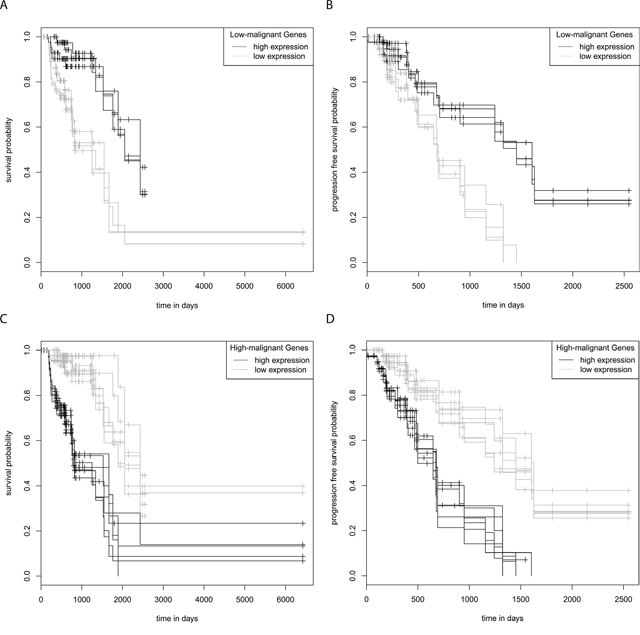 Kaplan-Meier survival and progression free survival curves grade III astrocytoma.