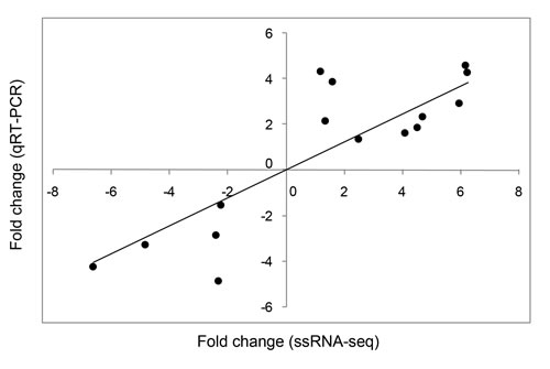 Correlation between relative fold changes in expression based on ssRNA-seq and qRT-PCR analyses.