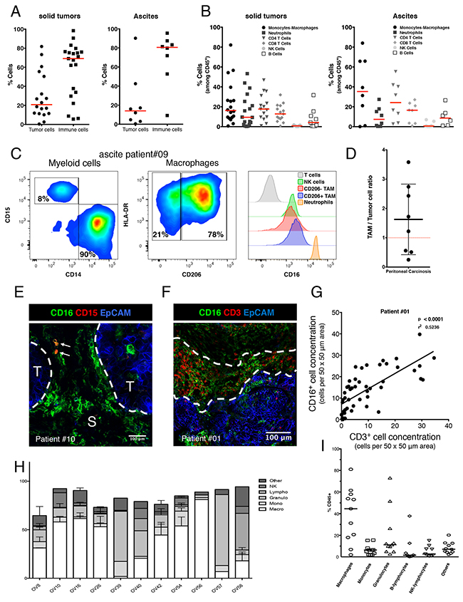Phenotypic characterization of human ovarian tumors infiltrating immune cells.