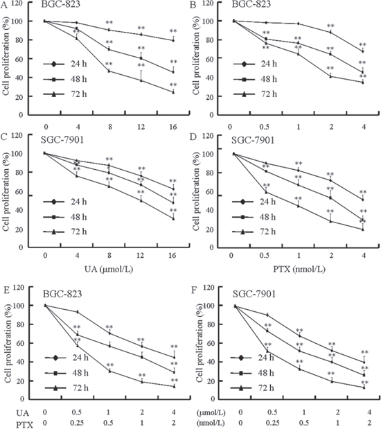Effects of UA and PTX on BGC-823 and SGC-7901 cell proliferation.