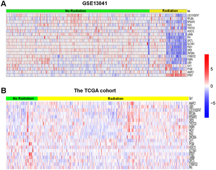 Hierarchical clustering analysis of GSE13041 and the TCGA cohort.