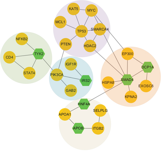 Network modules discovered in subtype 1.