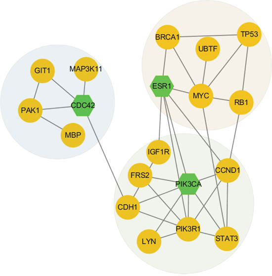 Network modules discovered in subtype 2.