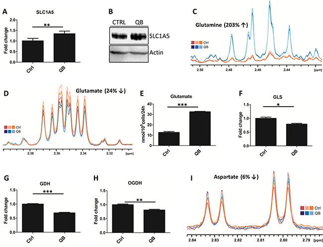 Quambalarine B (QB) deregulates glutamine metabolism in leukemic cells.
