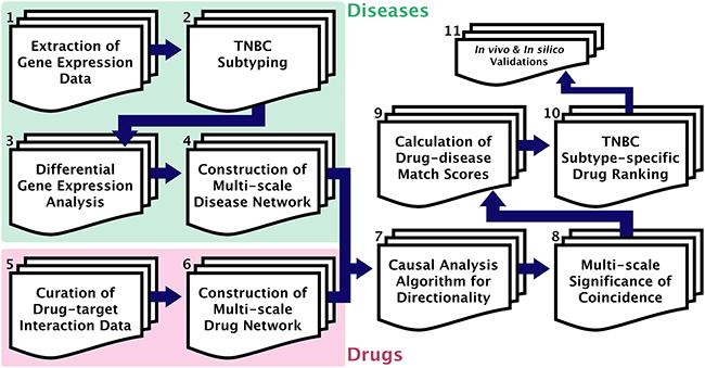 GenEx-TNBC workflow.