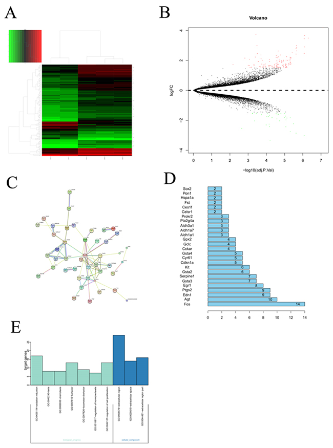 Bioinformatic analysis on the microarray data set GSE25286.