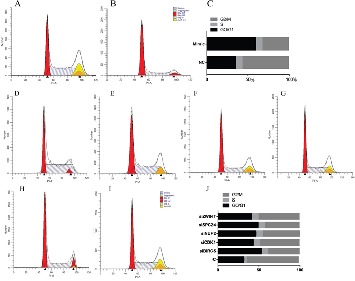Cell cycle analysis detected by flow cytometry.